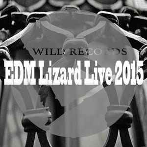 EDM-Lizard Live 2015