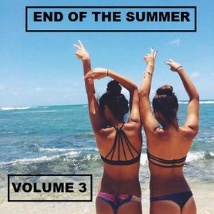 END OF THE SUMMER VOLUME 3 ( STEREO HUNTERS )