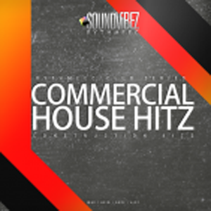 Commercial in Disguise (House / commercial vocal house Bash)