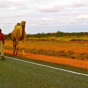 Outback-FollowTheStep-byTMS