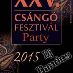 Dj ßandes @ (Csángó Festival Party)