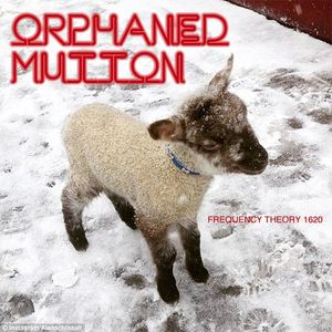 """Frequency Theory 1620  """"Orphaned Mutton"""""""