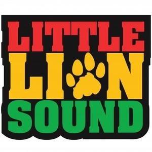 Live Little Lion Sound@Parc des Cropettes_Fête de la Musique 2013