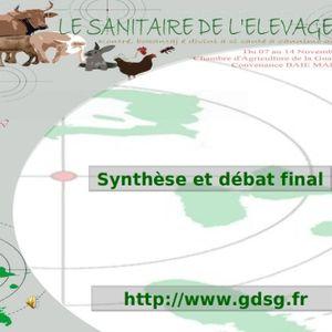 Synthèse_des_débats