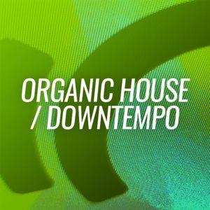Organic House Session #6