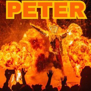 -david guetta dj set 11-2011 peter pan