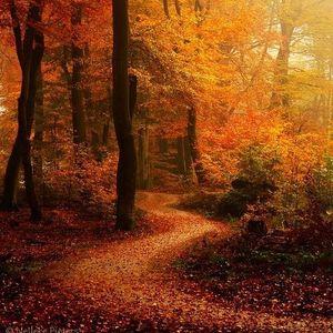 GloBeat Autumn Songs