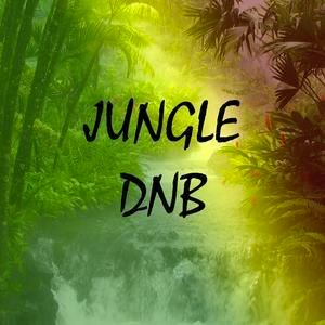 dickyd afternoon jungle dNb mix 2020