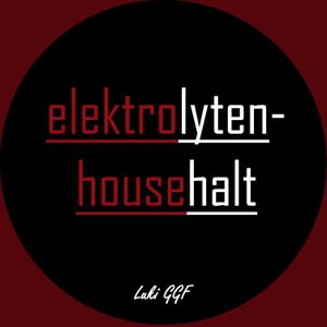 ElektrolytenHousehalt_Feb13