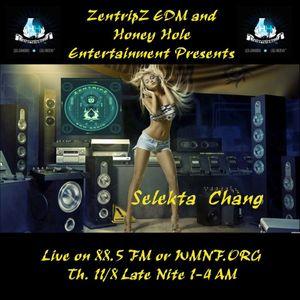 Live On Zen Trip Radio (November 9. 2012) Part 2