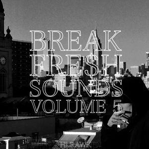 BREAK FRE$H SOUNDS VOL. 5  - HI.RAWK
