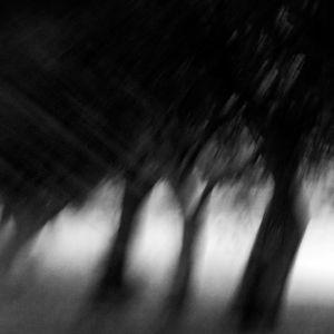 Insomnia Set Vol. 7