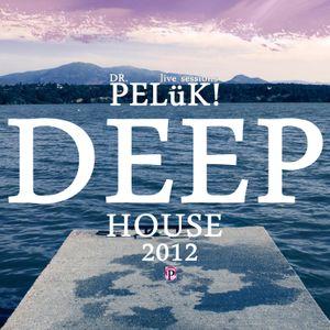 DR. PELüK! sesion DEEP HOUSE agost. 2012