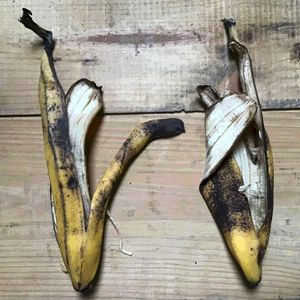 Mexican Bananafalls