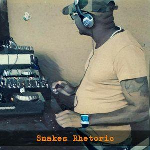 Musical Ear Vol1(SnakesRhetoric)DJSR2017