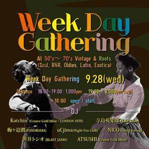 Weekday Gathering Sampler 01