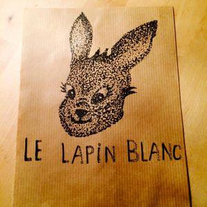 Lapin Blanc 01 : David Chouferbad 30-01-2015