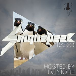 SniquePeek Radio hosted by DJ Nique (2/23/15)