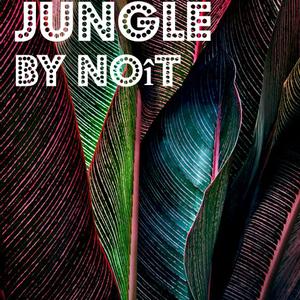 Noît - Jungle
