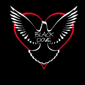 Black dove Live @ the Metbar Llanelli 10/5/12