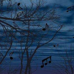 Cee-Los Midnight Session