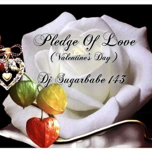 Pledge Of Love ( Valentine's Day - dedicated to my followers )