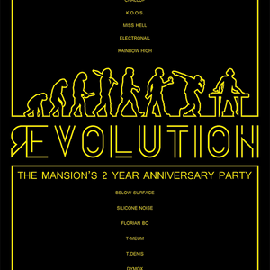 Below Surface b2b Florian Bo @ The Mansion - Nov 28th 2014 / Revolution - 2 Years Anniversary Party