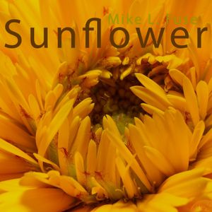 [DjSet] Mike L. Fuse - Sunflower