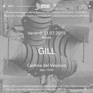 Gill live @ Cantina del Vescovo - 31072015 | Different Grooves 10th Anniversary