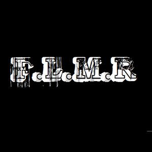 Mix Wiwek ( DJ F.L.M.R )