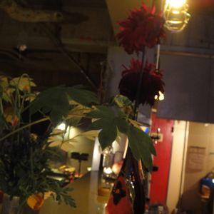 DJ naoko 20120529_love,light and music