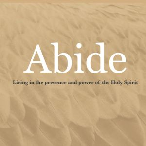 Abide Part 4: The Holy Spirit is a Comforter