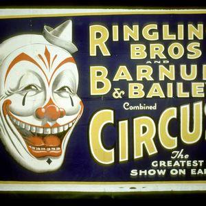 Mondo Circus Bizzaro