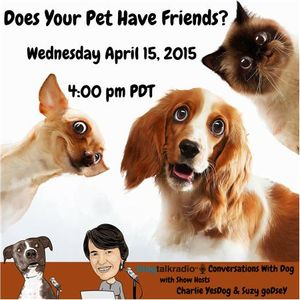 Does your pet have friends?