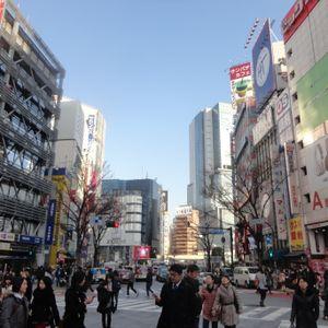 febrero 2014/tokyo