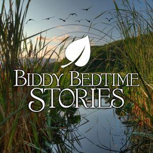 Classic Biddy Stories Sampler
