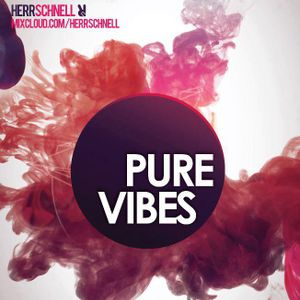 Herr Schnell @ Hooligans Pub - Pure Vibes Party - 08.02.2013