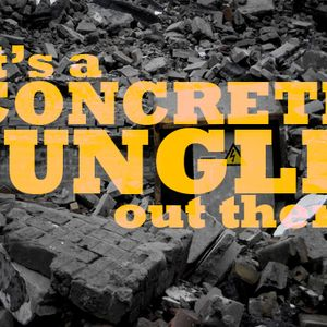 It's a CONCRETE JUNGLE out there - Wicked