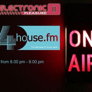 Electronic Pleasure Vol.10 09.10.2013