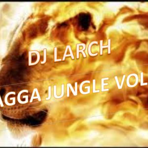 Dj Larch - Ragga Jungle Vol. 1