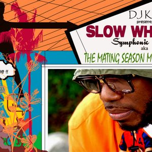 DJ KALEEM - Mating Season Mixtape
