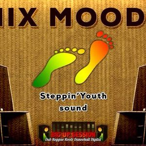MIX MOODS - Steppin'Youth @ Big Up Session