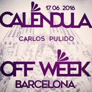 Carlos Pulido @ Sonar Off Week - Calendula - Live June 2016.mp3