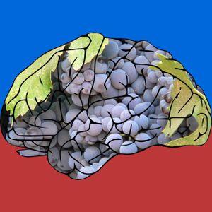mind grapes