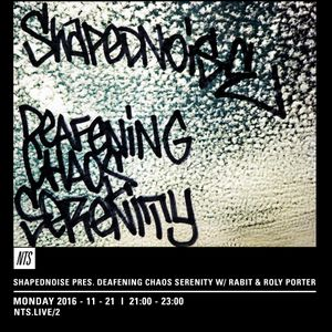 Shapednoise, Rabit & Roly Porter - 21st November 2016