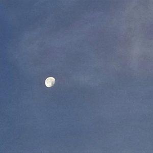 JFF 627 - Madame Moon