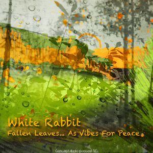 Concept Audio Podcast #18: White Rabbit — Fallen Leaves
