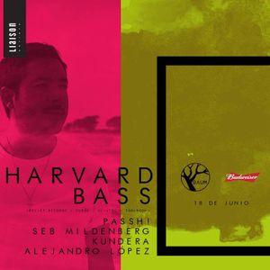 Seb Mildenberg @Baum w/ Harvard Bass