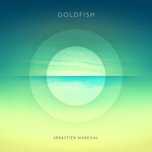 #352: Sebastien Marchal / Goldfish