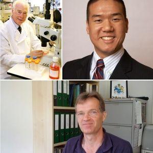 Conselho Científico #4 - Células Estaminais